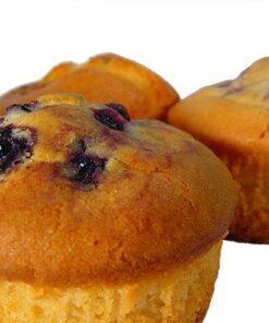 Phoenix Blueberry Muffin - Gluten Free