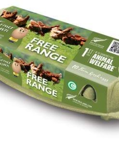 Free Range 10 Farm Fresh Eggs 530g